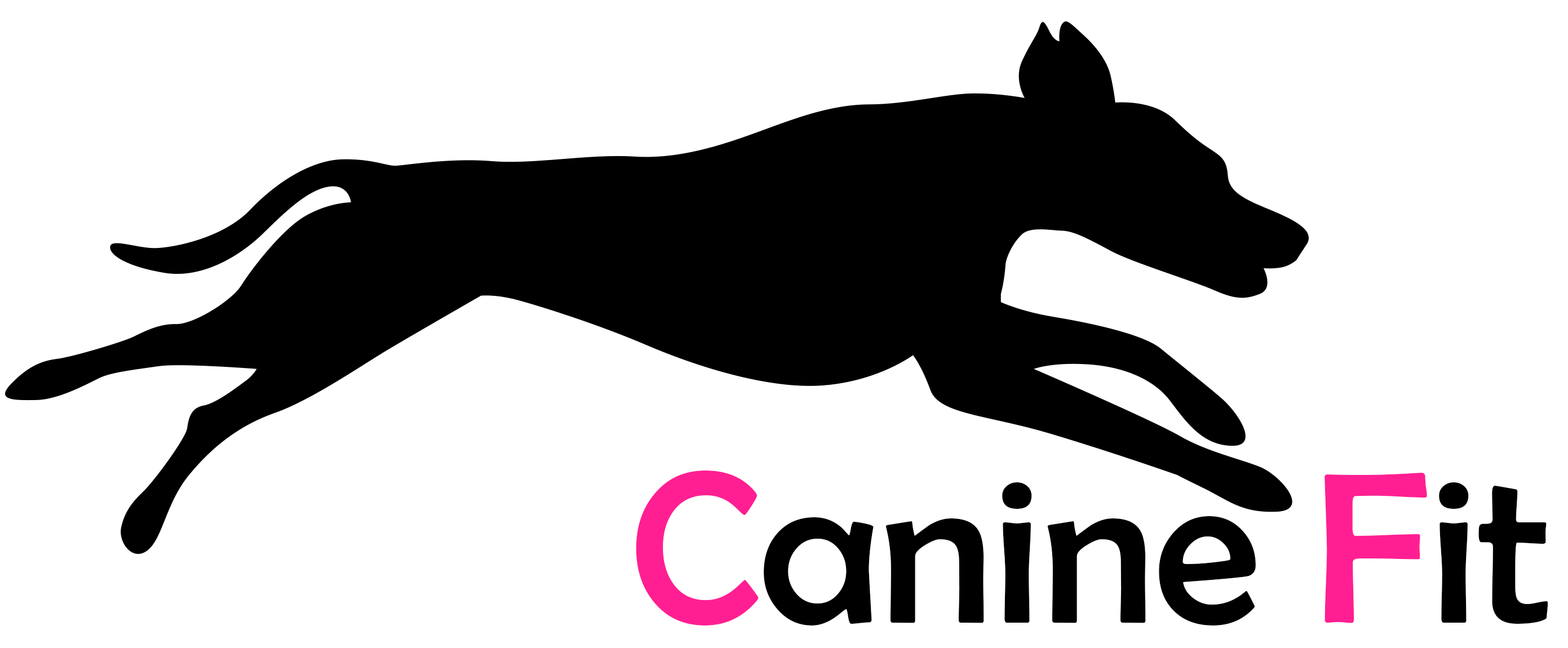 Canine Fit Physio & Sports Therapy